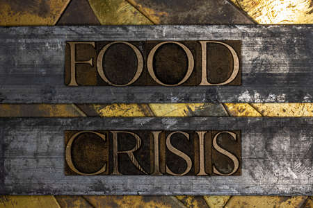 Food Crisis text on vintage textured grunge copper and gold background