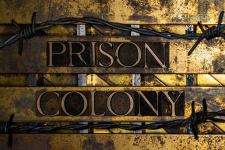 Prison Colony text with barbed wire on vintage textured grunge copper and gold background
