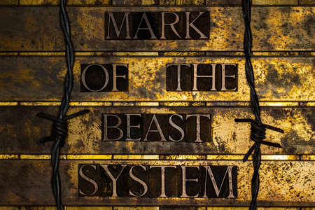 Mark of the Beast System text on textured grunge copper and vintage gold background