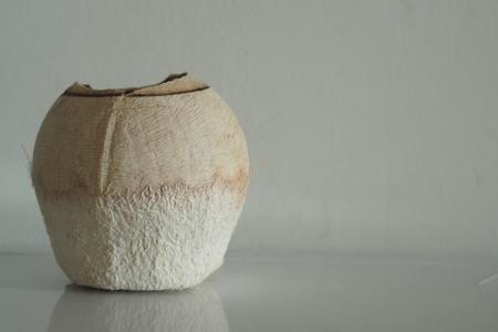 friut: Coconut