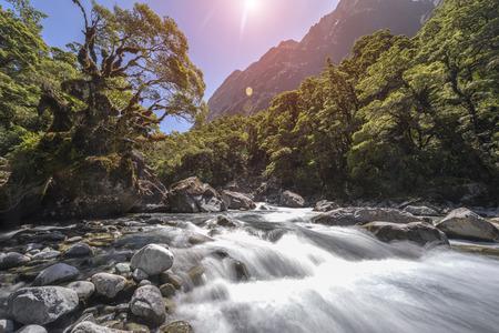 milford: Falls Creek, milford sound, New Zealand Stock Photo