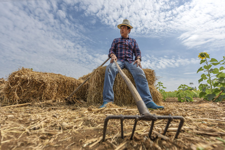 chaff: farmer sitting on the chaff of litter Stock Photo