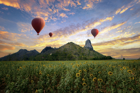 Balloons flying over sunflower field in sunset scenery mountain in back ground