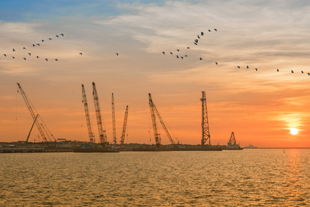 The new project in industrial equipment and heavy machinery crane and towers are going to develops the coastline terminal, at sunset in background