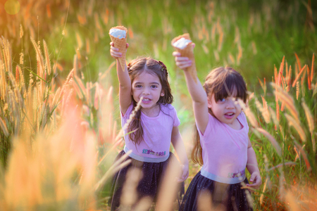 kids with ice cream in hand up i the air, cheerfully ad enjoy in field meadow up on the hill Imagens
