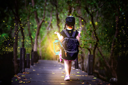 a little girl holding lamp light walks on the wooden bridge in the forest of fen marsh or bog see bundle of firefly in early dark of the night, field trip for a kids school learning the nature for preschool kids