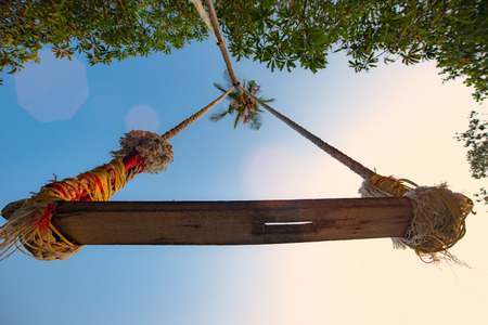 low angle view of wooden swing tight attached to the coconut palm tree under shadow of the tree leaf at light of the sunset, summer time vacation and long weekend welcome Zdjęcie Seryjne