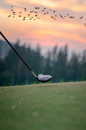 wood driver being to hit a golf ball on tee-off away to find winner destination ahead Фото со стока