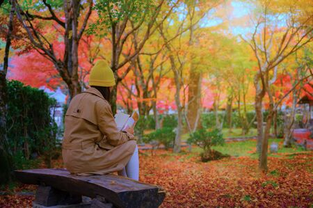 woman sitting on wooden chair under shadow of the autumn tree in public park, comfort reading a book in the light of morning of autumn season change