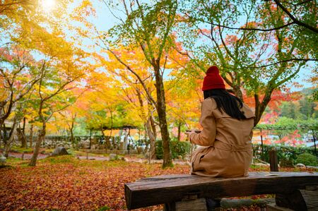 woman sitting alone on wooden chair under shadow of the tree autumn season change, reading, looking, or enjoy playing mobile in hand at public park in morning comfortable
