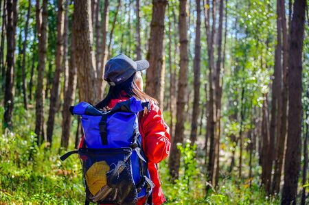 woman backpacker walks alone enyjoy the forest nature in the morninglife