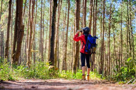woman researcher with tool watching the nature in forest