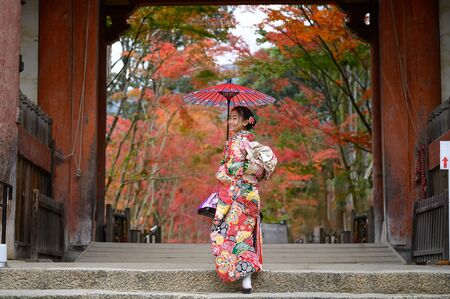 woman holding retro umbrella in old fashion style traditional kimono, walks alone in the middle of park of the village garden in autumn, travel and visit japan on incoming sport event
