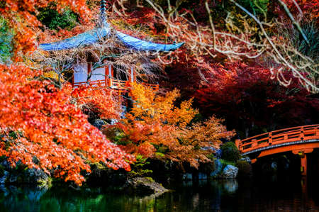Pagoda stay on the pond in autumn season change, present of the gingko maple leafs in multicolors, Digoji temple the famous and popular place for tourist visit in Japan, Upcoming Sport event in Japan 스톡 콘텐츠 - 166533860