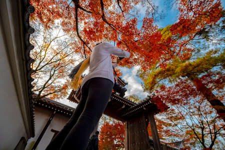 tourist or raveler enjoy takes photo of the autumn season change in public garden of Japan, Upcoming sport event, visit an travel in Japan Stockfoto