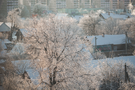 'yule tide': Trees in frost, seasons, village, town in the snow