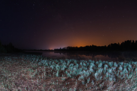 starry night, the stars over the lake, green grass lit by flashlight