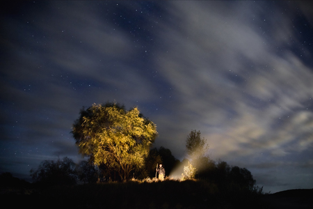 night stick: starry sky, night photography, astrophotography, trees, silhouettes, clouds in the sky, the man firing the fire, a man stands with his stick, the smoke from the fire, willow Stock Photo