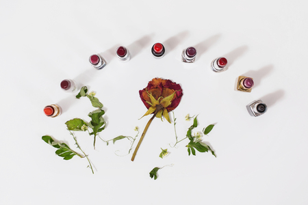 Multicolored lipsticks isolated on white background. Composition with makeup and dried flowers. View from above . Concept. Dried rose. Gift girl. Decorative cosmetics