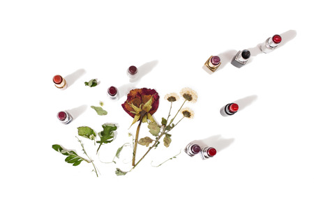 lip pencil: Lipstick isolated on white background. Dried flowers, roses lay on a white background, female lip pencil. Color lipstick.