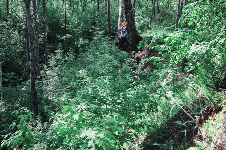 climbed: Red-haired girl in a blue dress climbed up a tree. Summer vegetation. Thumbelina. Birch, warm weather. A small woman in a large green forest. Adventure, fun, climbing