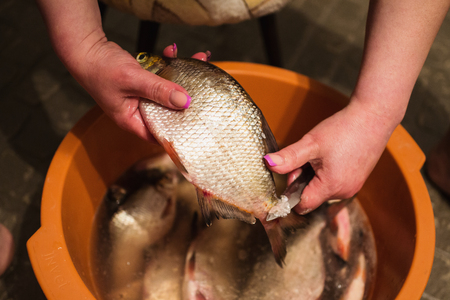 bagre: Female hands with manicure with a knife in her hands clean hulls from river fish. Carve fish. Cook food