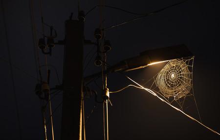 Web dat aan de lamp hangt. Het prachtige nachtlandschap. Lange sluitertijd. De spectaculaire nachthemel met de maan. Prachtig uitzicht. Het licht van de lantaarn op straat. Een vreselijke foto. Verschrikking.