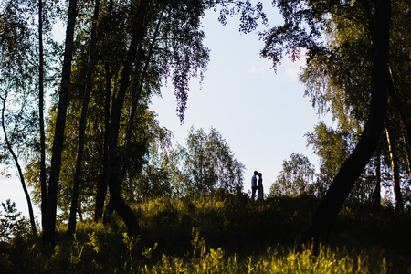 To love each other. Silhouettes of people Conceptual photo. Pine forest