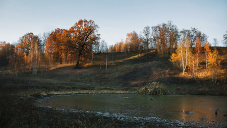 Yellow orange autumn trees with the warm light of the setting sun. Beautiful scenic view. The lake in the valley.