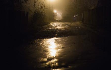 짙은 안개에서 밤에 도시입니다. 어두운 거리에 두꺼운 스모그. 가로등에서 아름 다운 혼합 된 빛입니다. 사람과 나무의 실루엣입니다. 도로의 기둥