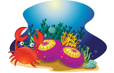 deepsea: Illustration of crab on a tropical reef