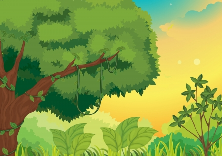 Illustration of a nature background Vector