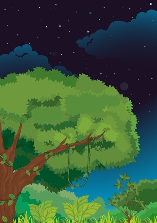 Illustration of a nature background at night Stock Vector - 13076949