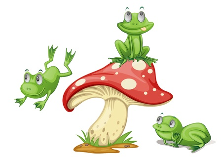 Illustration of 3 frogs on a mushroom
