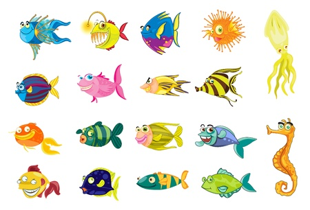 marine fish: Illustration of a collection of fish