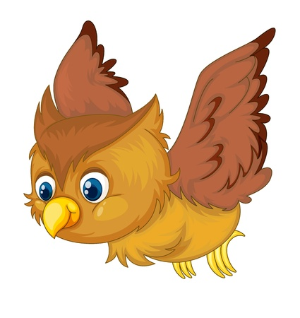 isolated owl: Ilustraci�n de un b�ho aislado Vectores