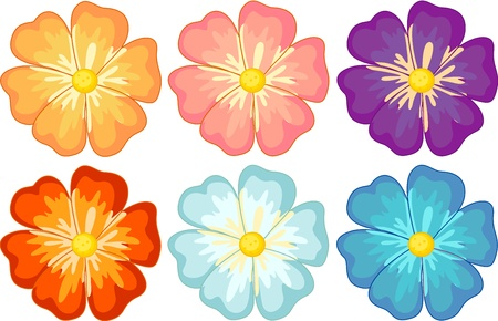 fresh flowers: Illustration of a collection of isolated flowers