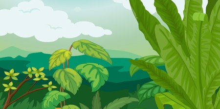 Lush plants and fern illustration Vector
