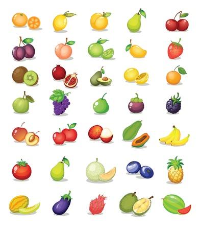 mangostano: Illustrazione di frutta su sfondo bianco