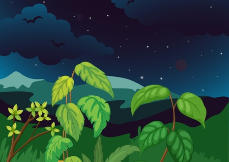 Lush forest at night illustration Vector