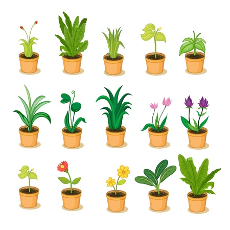 series of isolated plant in pot illustrations