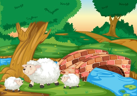 Illustration of sheep in field Vector