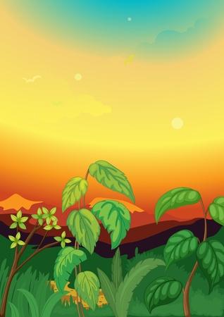 Illustration of Sunset scene in jungle Stock Vector - 13077185