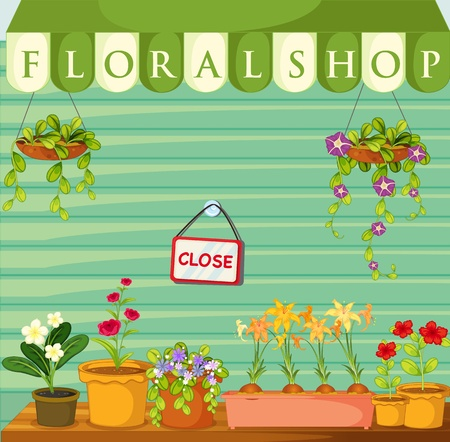 plant pot: Illustration of a florist shop