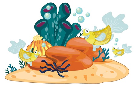 Illustration of coral reef object