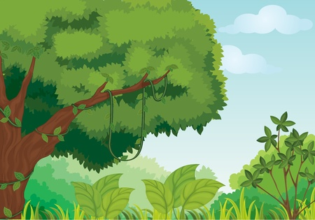 Illustration of tropical summer scene Vector
