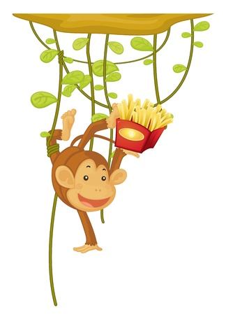 jungle vines: monkey hanging eating fries