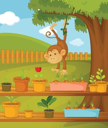 cute monkey: Illustration of monkey in the garden Illustration