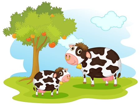 cows grazing: illustration of 2 cows in pasture