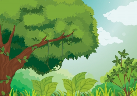 cartoon jungle: illustration of forest background